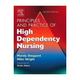 PRINCIP PRACTICE HIGH DEPENDENCY NSG 2E